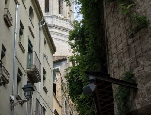VISITA A GIRONA – MUSEU D'HISTÒRIA I CALL JUEU (6-11-2019)
